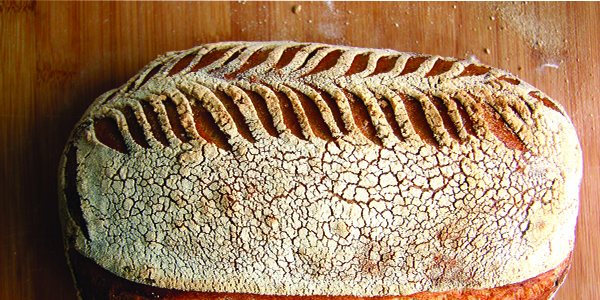 Low Carb Bread (Gluten Free)